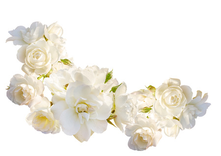 Beautiful  horizontal frame with bouquet of white roses with rain drops isolated on white background. Overhead view.