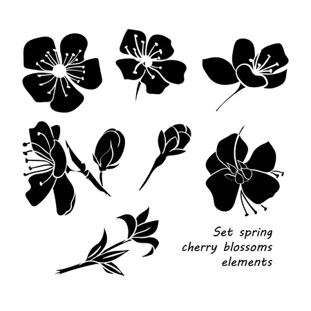 Set of black silhouette spring cherry blossom flowers. Hand drawing. Black and white. Vector illustration Stock Illustratie