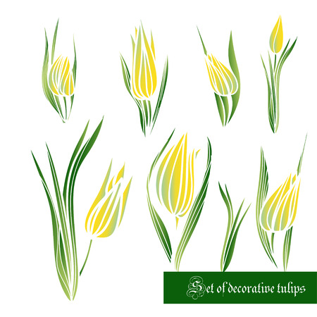 Set of decorative color  elements, tulips and leaves. Vector illustration. Best for your design, Tattoo, invitations, greeting cards, textiles, prints