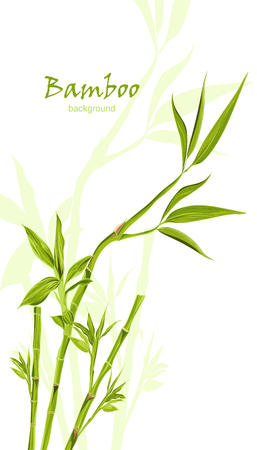 leaves frame: Hand-drawn green bamboo bacground with space for text. Easily editable  vector illustration