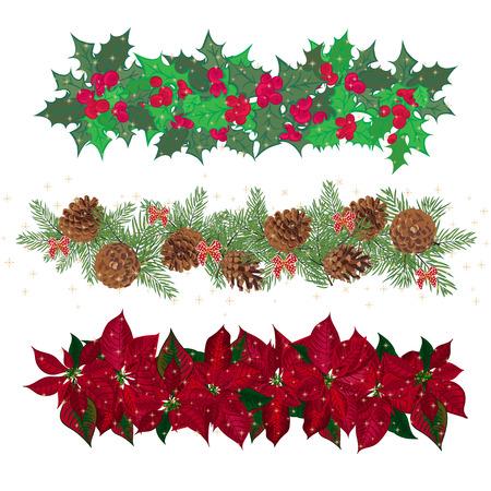 flor de pascua: Establecer guirnaldas festivas de la baya del acebo y cineraria. Ilustración vectorial Vectores