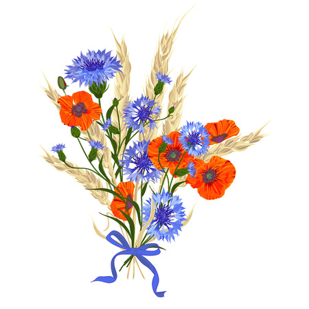 spikelets: Beautiful bouquet of cornflowers, poppies and wheat spikelets, tied with silk ribbon Isolated on white. The best idea for greeting cards, invitations, wedding design