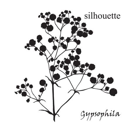 아름 다운 손으로 그린 실루엣 gypsophila 검정, 흰색 및 빨강 색상의 분기. 벡터 (일러스트)