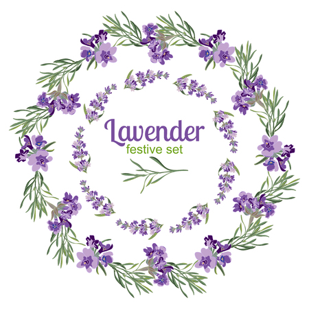 lavandula angustifolia: Set festive frames and elements with Lavender flowers for greeting card. Botanical illustration are drawn by hand Illustration