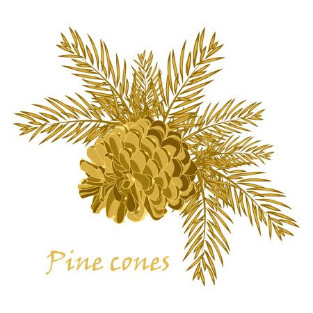 fir cone: Fir tree branches with pine cone in golden color. Vector illustrations