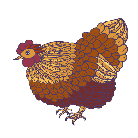 vector illustration  hen: Decorative stylized hand-drawn hen isolated on white background. Vector illustration. Illustration