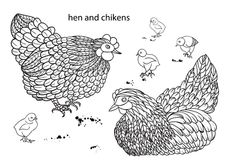 chikens: Set of hens and chikens.. Hand-drawn doodle contour Vector illustration