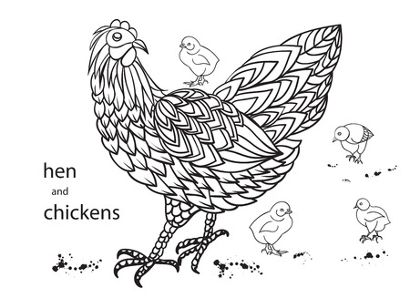 vector illustration  hen: Set of hen and chickens.. Hand-drawn doodle contour Vector illustration