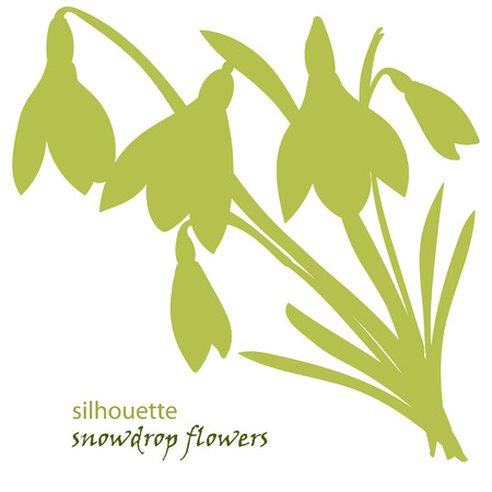 Set silhouette beautiful snowdrop flowers. Vector illustration. Isolated on white background Illustration