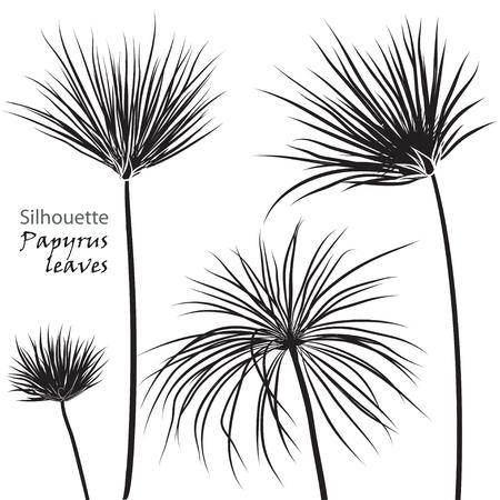 실루엣 열 대 야자수 파피루스 검정색 흰색 배경에 고립 나뭇잎. 벡터 일러스트 레이 션 일러스트