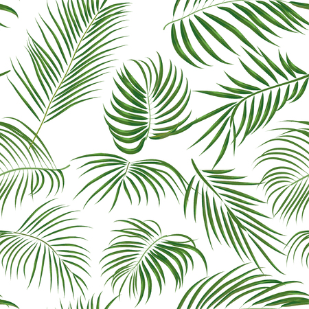 Seamless hand drawn tropical pattern with palm leaves, jungle exotic leaf on white background. Fashion textile print, summer floral wallpaper. Vector illustration, botanical drawing Reklamní fotografie - 81106706