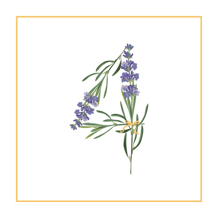 Digit 4 monogram retro sign alphabet with lavender flower initial. Watercolor style, botanical illustration isolated on white. Vintage vector font typeface.