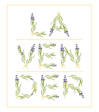 Typography slogan with lavender flower text Lavender for t-shirt printing, embroidery, design. Graphic and printed tee. Inspirational Quote isolated on white background Vector illustration.