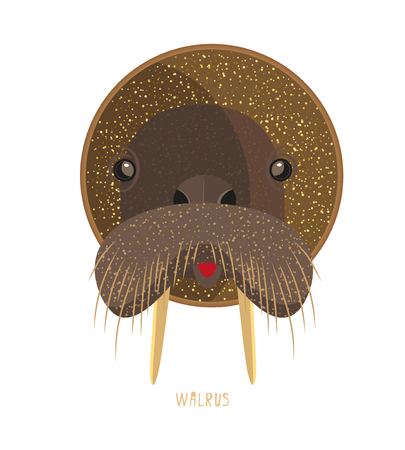 Cute birthday baby sticker with animals walrus Design for greeting card, cartoon invitation, banner, frame milestone print Isolated on white
