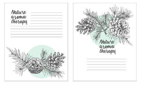 Set card template with pattern realistic botanical ink sketch of fir tree branches with pine cone on white background Good idea for invitations, greeting postcards, label, sticker Vector illustrations Vector Illustratie
