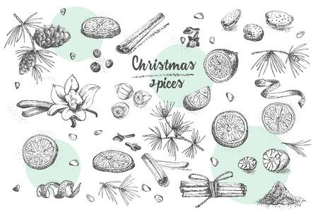 Satz Hand gezeichnetes Weihnachtswintergewürzmuster. Traditionell verwendet in gemachten Desserts, heißem Glühwein, hausgemachten Keksen. Gute Idee für Vorlagenmenü, Rezepte, Grußkarten. Vektorillustration Vektorgrafik