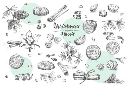 Set of hand drawn Christmas winter spices pattern. Traditionally used in made desserts, hot mulled wine, homemade cookies. Good idea for templates menu, recipes, greeting cards. Vector illustration Vektorové ilustrace