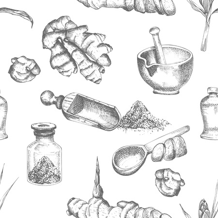 Seamless pattern hand drawn of Ginger roots, lives and flowers in black color isolated on white background. Retro vintage graphic design Botanical sketch drawing, engraving style. Vector illustration.
