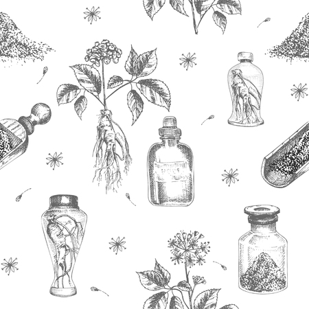 Seamless pattern realistic botanical ink sketch of ginseng root, flowers, berries, bottle, mortar and pestle isolated on white background, Medicine plant. Vintage rustic vector illustration.