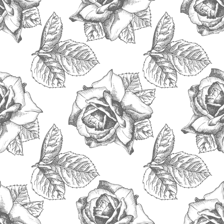 Seamless pattern Hand drawn sketch roses Detailed vintage botanical illuatration. Floral frame. Black silhouette isollated on white background. Vector Creative graphic art in engraving style