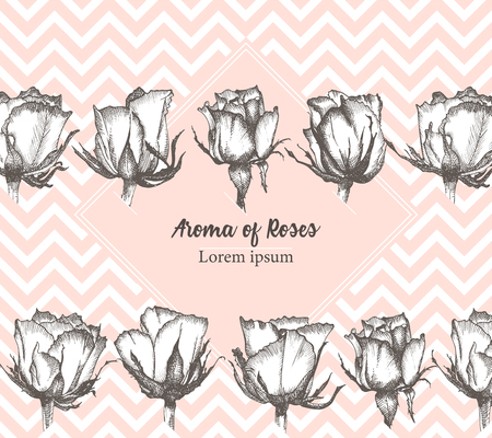 Cute valentines day or label card with Rose flower sketch in engraving style Vintage vector illustration Lovely background. Typography design. Lettering text Aroma of Love