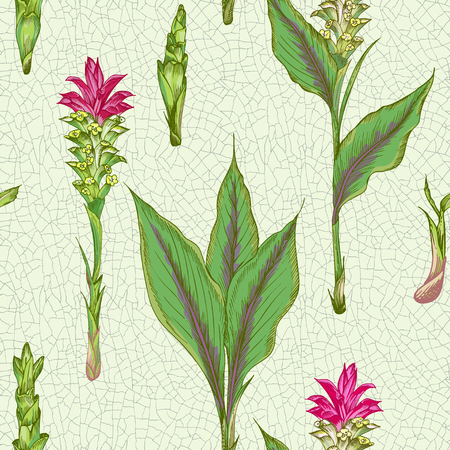 Colorful seamless pattern with hand drawn of Turmeric roots lives and flowers on cracked ceramic background Retro vintage graphic design. Botanical sketch drawing, engraving style. Vector illustration