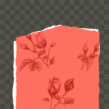 Trendy easy editable template for social media post in torn paper style. Roses flower theme Creative design background for individual and corporate web promotion, blogs. Place for photo and text