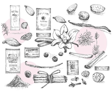 Set of hand drawn wine labels and Christmas winter spices pattern used in made desserts, hot mulled wine, homemade cookies Vintage style. Design for menu, recipes, greeting cards. Vector illustration Çizim