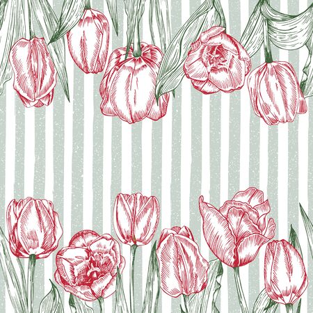 Greeting background with Spring flower tulips bouquet in red and green colors. Horizontal seamless pattern Engraving drawing Vintage style Realistic botanical sketch. Women mother days, 8 march design