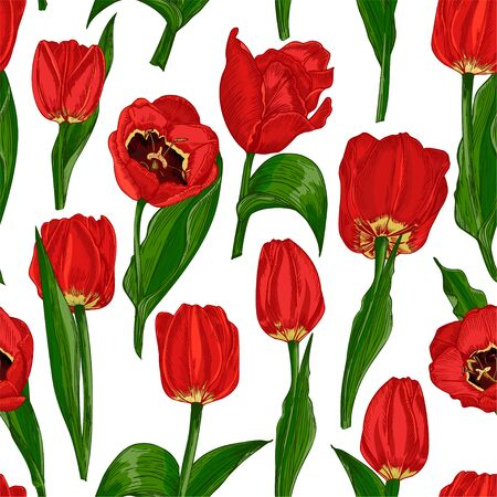 Greeting seamless with Spring flower tulips in red and green colors isolated on white background. Engraving drawing style Realistic botanical nature sketch. Women, mother days, 8 march design