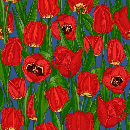 Greeting seamless with Spring flower tulips bouquet in red and green colors on blue background. Engraving drawing style Realistic botanical nature sketch 免版税图像 - 140289558
