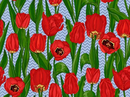 Greeting seamless with Spring flower tulips bouquet in red and green colors on blue background. Engraving drawing style Realistic botanical nature sketch 免版税图像 - 140289560