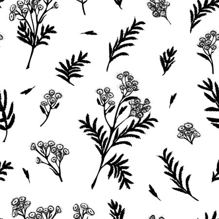 Seamless pattern with black hand drawn silhouette of tansy, lives and flowers isolated on white background. Retro vintage graphic design. Botanical sketch drawing, Vector illustration. Ilustración de vector