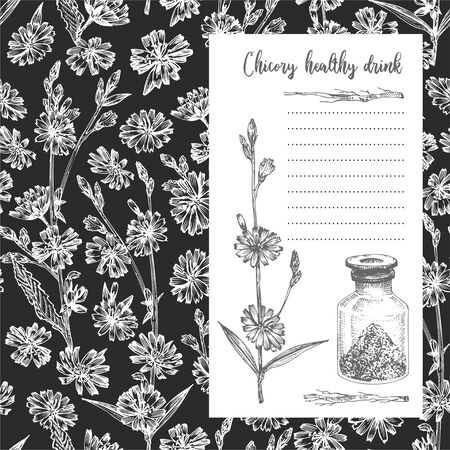 Realistic Botanical ink sketch of chicory root, flowers, powder, teapot, tea cup and spoon isolated on chalkboard background, floral herbs Medicine plant. Vintage card design vector illustration