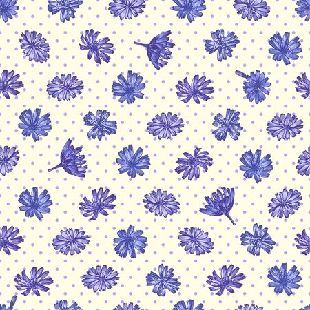 Seamless pattern with Realistic Botanical color sketch of chicory flowers, isolated on yellow background, floral herbs collection. Medicine plant. Vintage rustic vector illustration Ilustracja