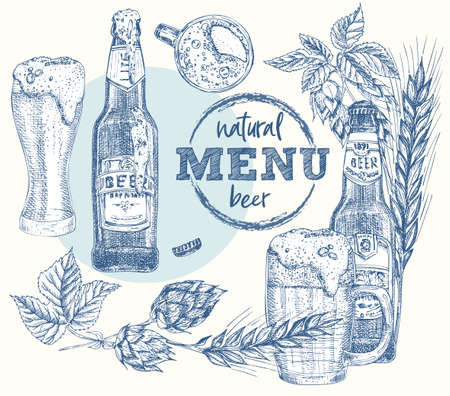 Set bottles craft, organic beer, glass, wheat ear, hop. Vintage hand drawn sketch design bar, restaurant, cafe menu Realistic engraving style Creative template for flyer, poster Graphic vector art