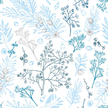 Winter christmas seamless pattern with twigs, berries, and leaves of plant isolated on white background. Hand-drawn vintage sketch botanical illustration Engraving style Flat color vector illustration