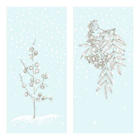 Set christmas new year card with rowan berry Winter plants isolated on blue snow background. Hand-drawn vintage sketch botanical art. Engraving style. Flat color Vector illustration Vettoriali