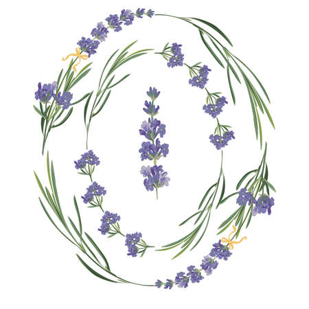 Set violet Lavender beautiful floral frames template in vector watercolor style isolated on white background for decorative design, wedding card, invitation, travel flayer. Botanical illustration