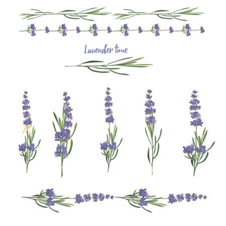 Set violet Lavender beautiful floral elements in watercolor style isolated on white background for decorative design, wedding card, invitation, travel flayer Botanical illustration. Ilustração