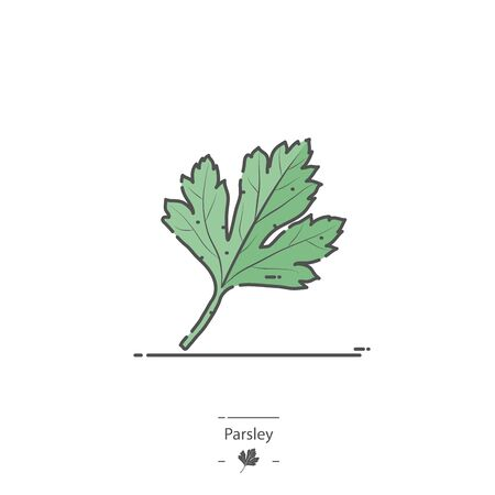 Parsley - Line color icon