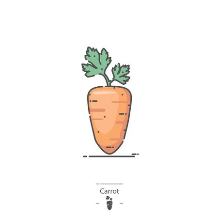 Carrot - Line color icon