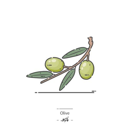Olive - Line color icon