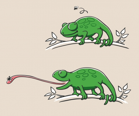 hunting chameleon Illustration