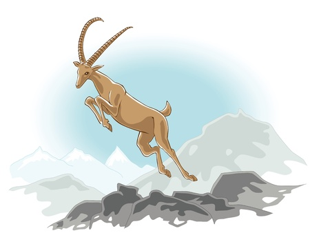 jumping ibex in the mountains