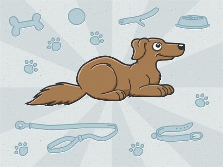 cane con accessori