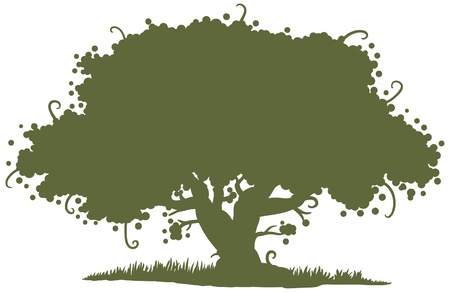 silhouette of a big oak tree Vector