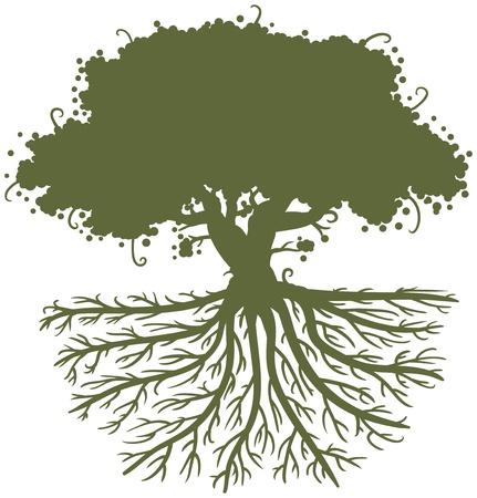 arbol raices: silueta de un árbol de roble con grandes raíces fuertes