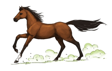 illustration of a galloping brown (bay) horse Stock Photo