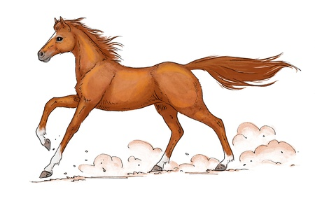 sorrel: illustration of a galloping chestnut (sorrel) horse Stock Photo
